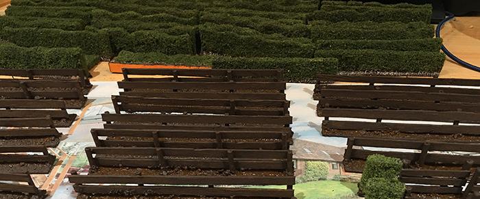 More Hedges & Fences